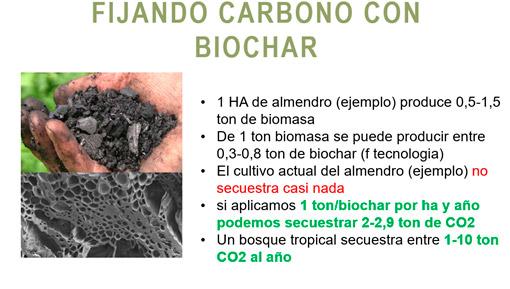 biochar-graf-7