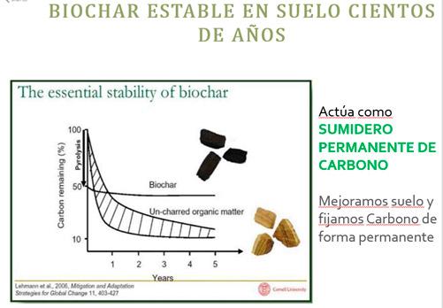 biochar-graf-6