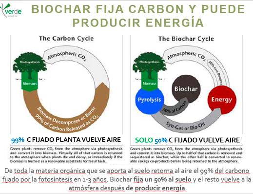 biochar-graf-8